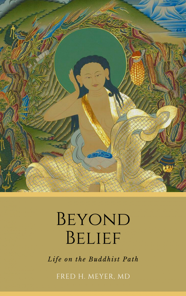 beyond belief: life on the buddhist path